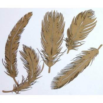 Lasercut - Feathers